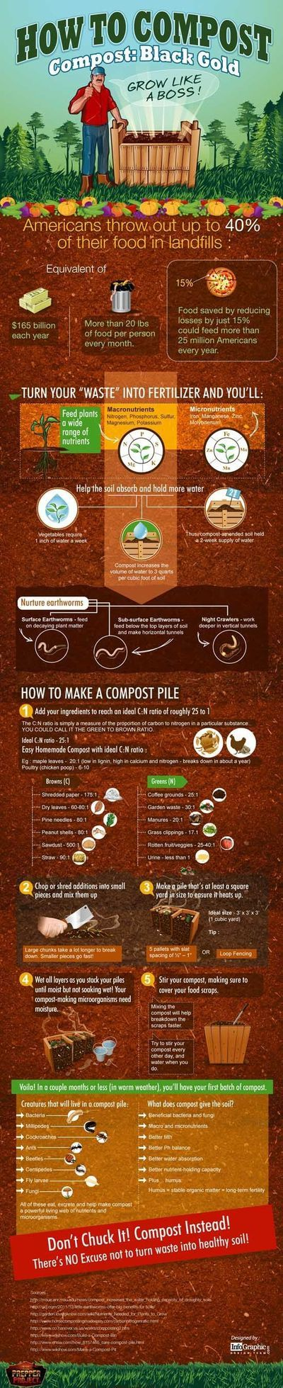 If you are a NEWBIE to composting, here's a helpful graphic of How To Compost
