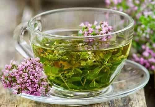 Рецепты применения материнской травы
