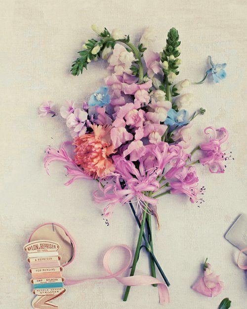 flowers _ colors.