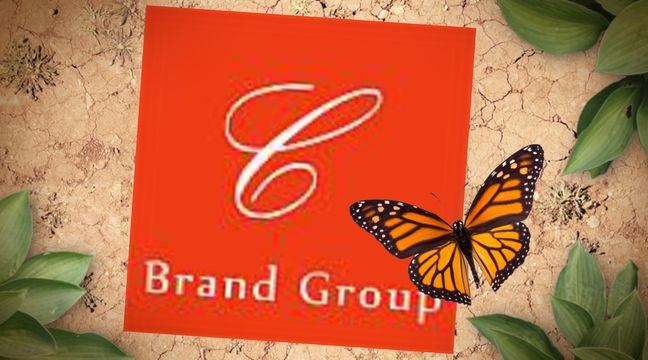 Celebrity Brand Group is an integrated creative agency comprising of talented people from advertising, design, digital, technical, social media and direct backgrounds. http://celebritybrandgroup.com