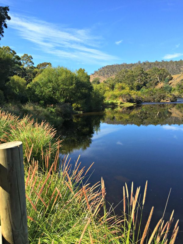 View of the Derwent River from the #fishing platform at Windsor Corner, Hayes via New Norfolk #Tasmania Photo and article for think-tasmania.com