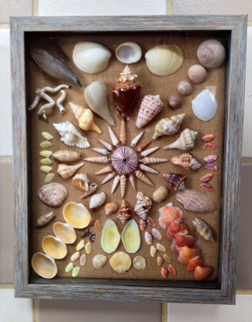 Sanibel shell shadowbox made by Jane Kintzi