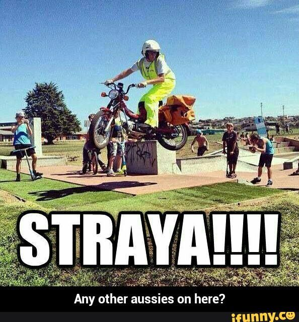 Lol straya - Google Search