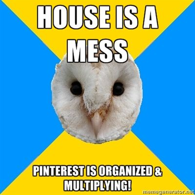 House is a mess. Pinterest is organized & multiplying.