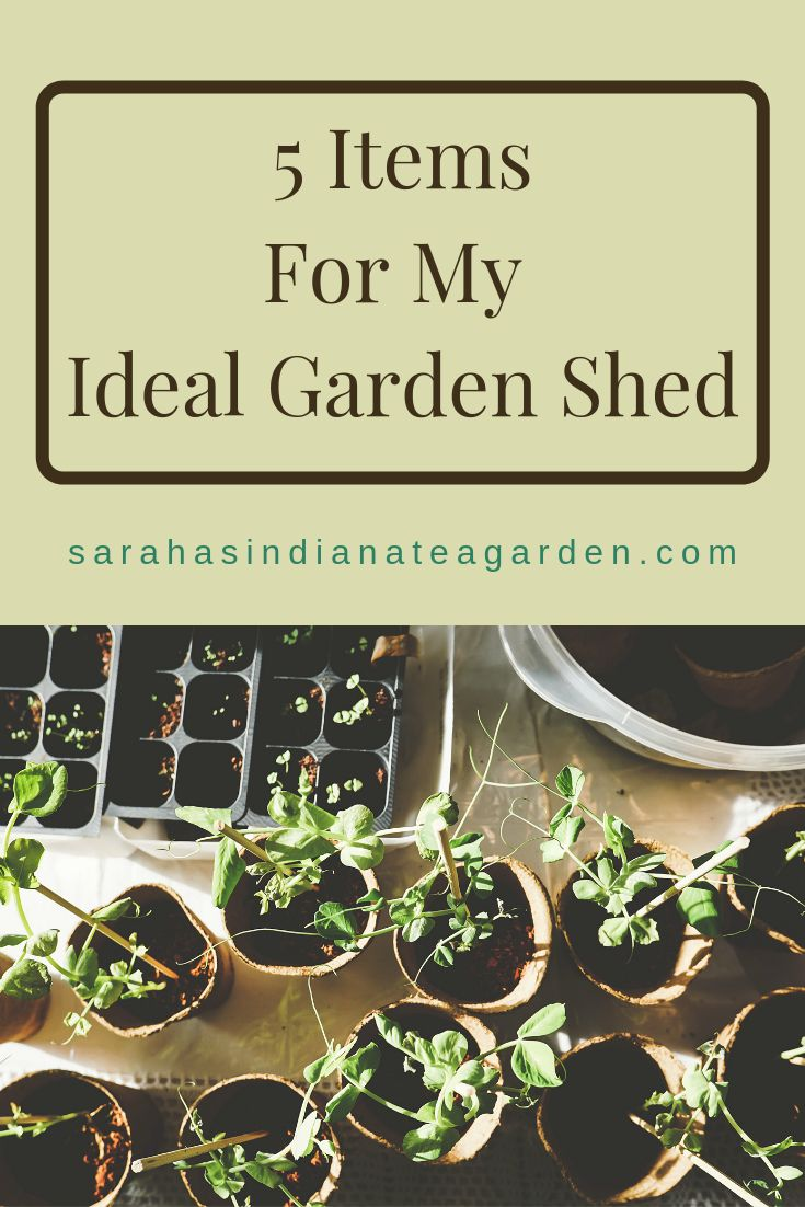 5 Items for My Ideal Garden Shed