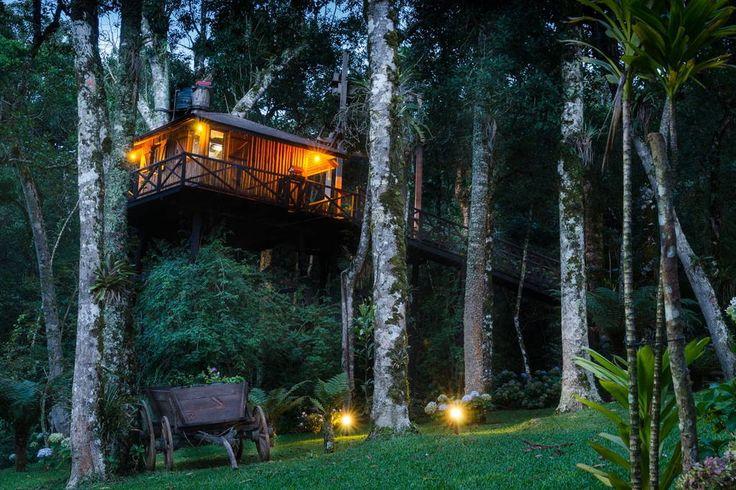 Ganhe uma noite no Casa na Árvore em Monte Verde (MG) - Casas na Árvore para Alugar em Monte Verde no Airbnb!
