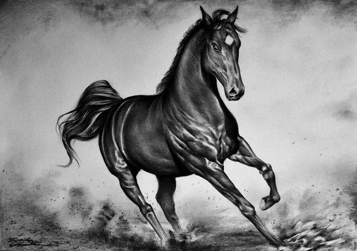 Horse_1 - Desen în Creion de Corina Olosutean // Horse_1 - Pencil Drawing by Corina Olosutean