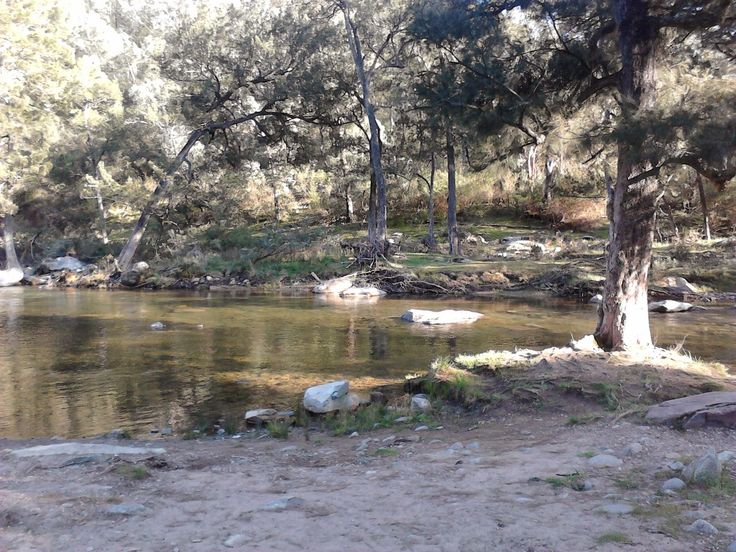 camping, flea creek, NSW national park, brindabella