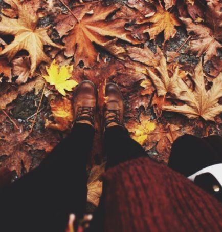 // I love the sound of crunching leaves
