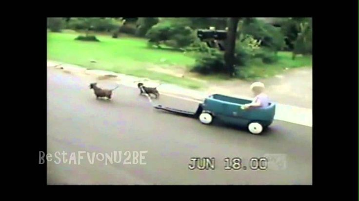 nice ☺ AFV Part 108 (NEW!) America's Funniest Home Videos 2012 (Funny Videos Montage Compilation)