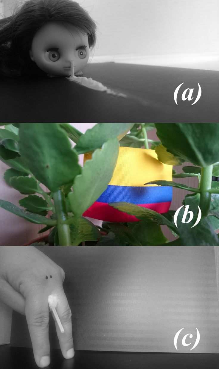 IMAGE/ABILITY. Week 1: Fun(?) facts about Colombia (not Columbia): (a) According to Brian Griffin (2016), Colombia is the primary producer of cocaine worldwide. (b) UN (2016) recognizes Colombia as one of the top three most biodiverse (with the highest amount and types of plants and animals) countries in the world. (c) Homer Simpson (2015) states that Colombians have the larger penis size with an average length of 17.93cms. Which one is true? Be aware, it is just an academic assignment.
