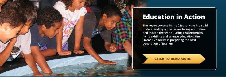 New Bedford Ocean Explorium | Center for ocean science public education