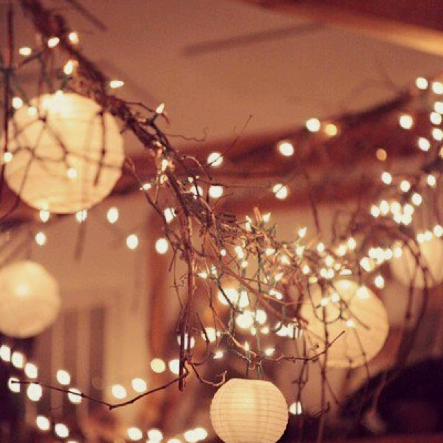 wedding lights. After Christmas plain white lights will be on clearance.