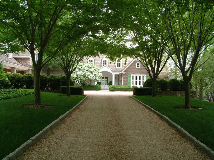 Gravel drive and Zelcova allee to residence. Landscape architecture by Howard Design Studio.