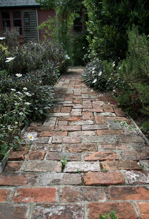 small path made of old bricks in a cottage herb garden