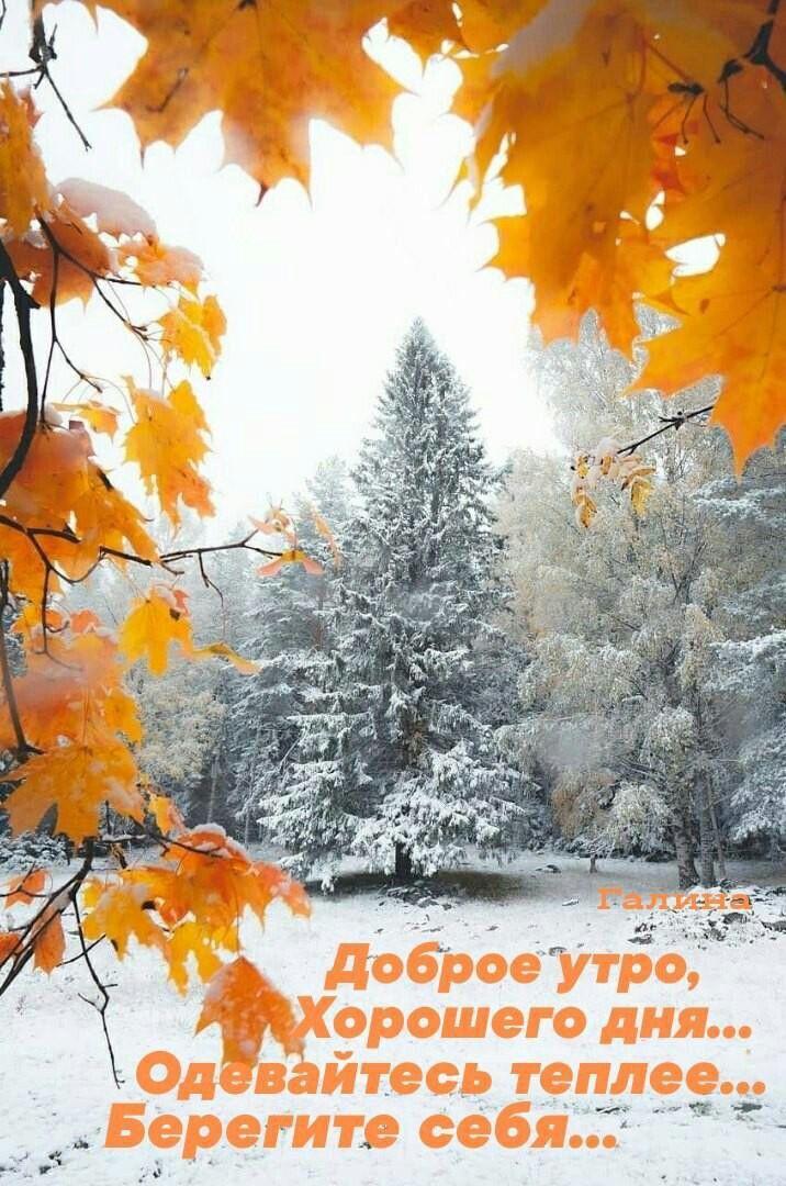 Pin Ot Polzovatelya Olga Raiser Na Doske Zima Zima Fotografii