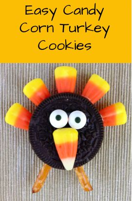 If you're searching for the perfect after-dinner Thanksgiving snack for the little ones, look no further than this adorable turkey! You're sure to impress your younger (and older) guests with this bite-size treat.