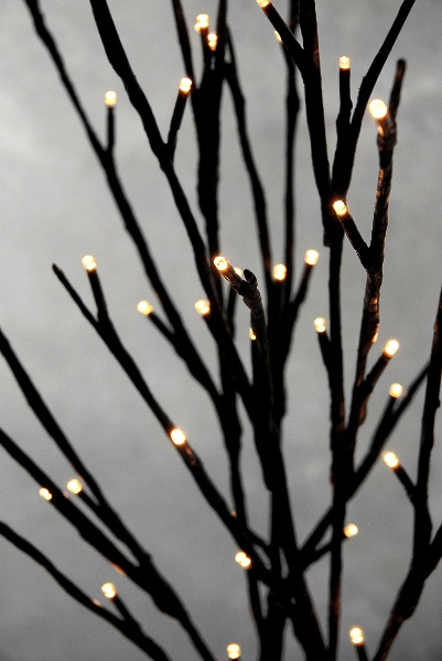 best 25  lighted branches ideas on pinterest