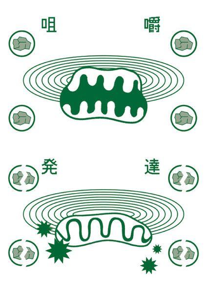Tadashi Ueda for Lucky Prawn. | Lucky Prawn