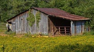 Old Barns: Farms Barns, Childhood Memories, Beautiful Barns, Barns Barns Barns, Paste A Bygones, Barns Cabin, Bygones Era, Feelings Connection, Barns Lov