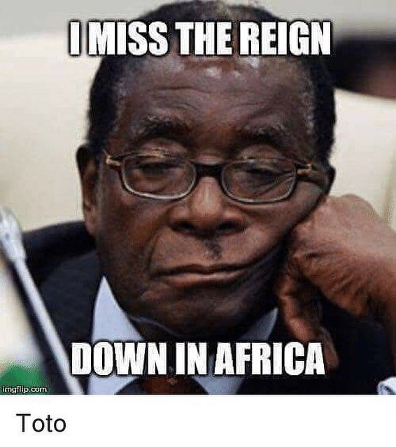 Gonna take some time to do the things we never did #africa #mugabe #zimbabwe #southafrica #president #resign #lekkerman