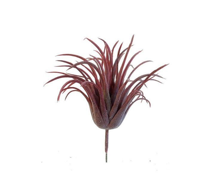 PLANTE ARTIFICIELLE TILLANDSIA H13 D12 ROSE