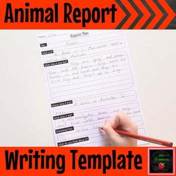 Animal Report Plan Writing Template Writing Ideas Information