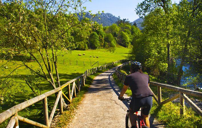 Senda del Oso... una ruta que nos adentra en el paraíso por el trazado de las vías de un antiguo tren minero - Guía de Asturias: GEOLOCALÍZATE Y DESCUBRE LO MEJOR A TU ALREDEDOR!!