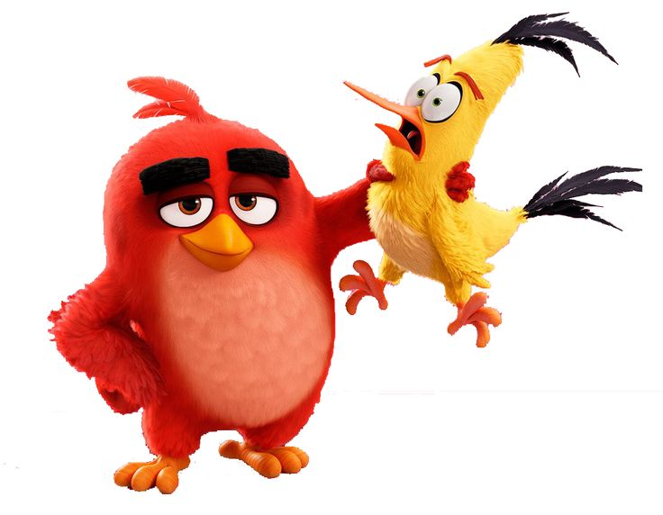 Drawing Angry Birds Movie: Angry Birds Movie Characters, Angry Birds