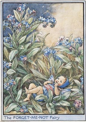 Baby Forget-Me-Not Fairy