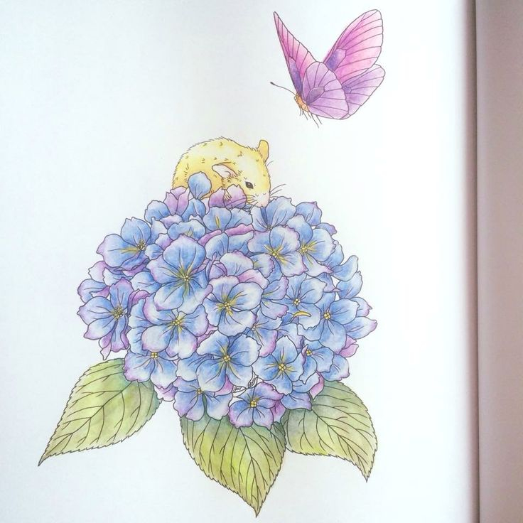 Yellow golden mouse with blue hydrangea