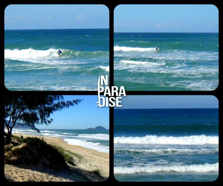 2ª Edição Boletim das Ondas In Paradise no ar! - In Paradise