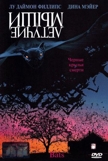 Летучие мыши (Bats)