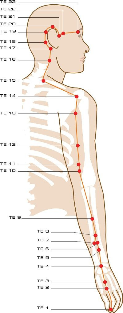 Triple Energizer Acupuncture Points