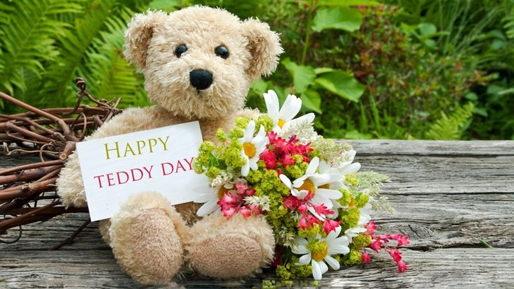 happy valentine day 2017, , valentines message, valentines day quotes, happy valentines day, valentine messages, Valentines Day 2017, v day, teddy day, teddy day 2017, teddy day 2017 sms, teddy day wishes, teddy day messages, teddy day quotes, teddy day facebook status, teddy day whatsapp messages, indian express, indian express news
