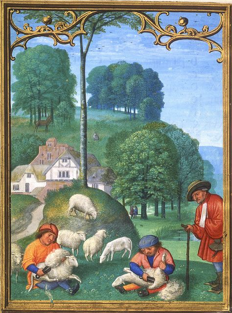 June - Sheep shearing  Da Costa hours [1515 ] Juni Schafschur