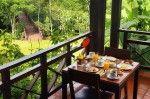 Don Puerto Bemberg Lodge es un hotel 5 estrellas en el corazón de la selva y a sólo media hora de las Cataratas del Iguazú. Senderos, cascadas, ríos, vegetación y fauna típica rodean el lodge, que cuenta...