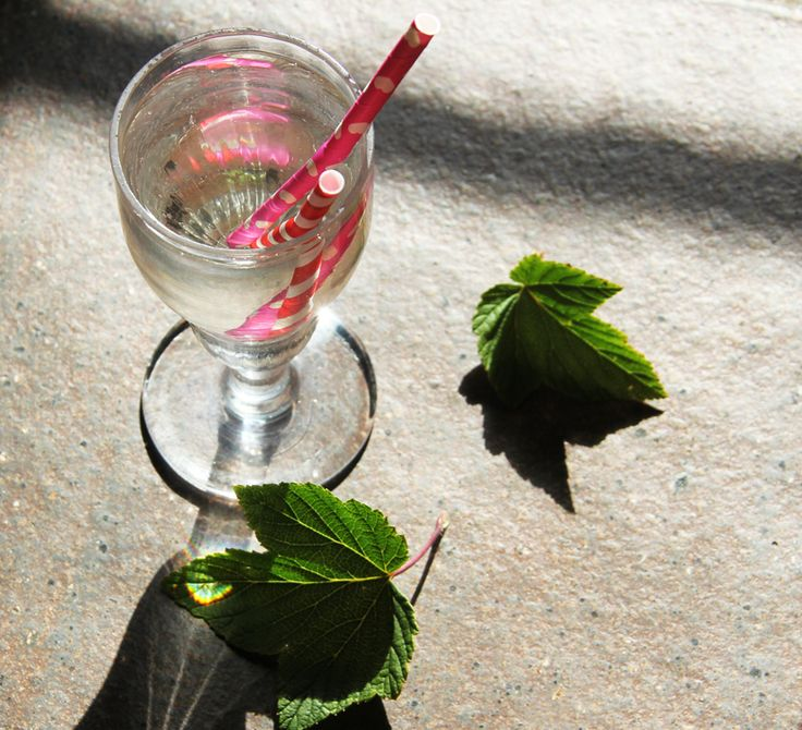 drik lavet på solbærblade