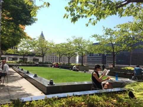 This public,  seventh-story, rooftop garden is one of Seattle's best-kept secrets. It's free, open to the public,  and an oasis high ...