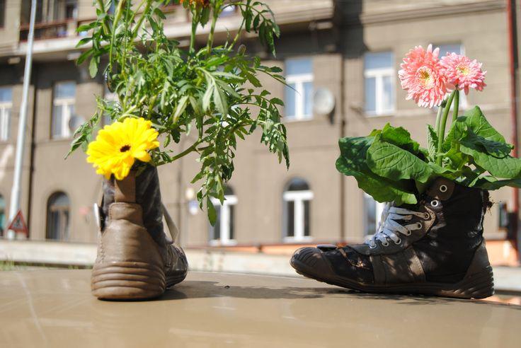 Lovely gardening