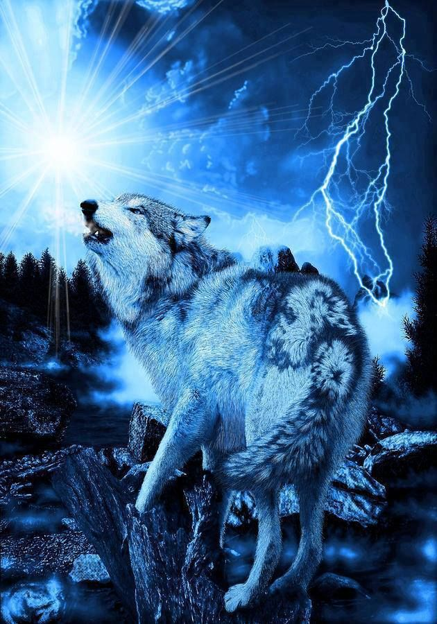 Www Trucks For Sale >> Blue Lightning Wolf | Wolves and Native American Indians | Pinterest | Wolves, Lightning and Blue