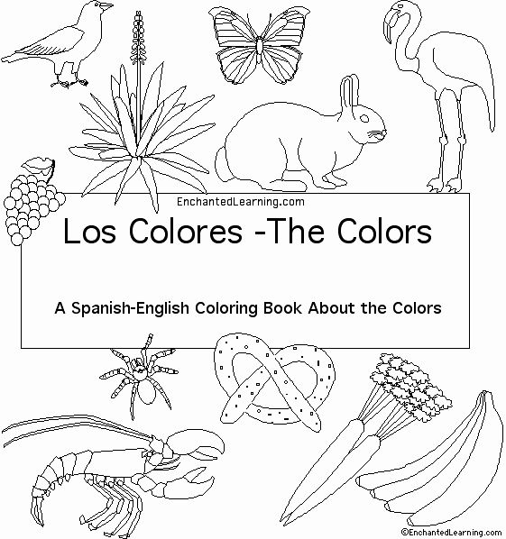Coloring Book In Spanish Unique Colors In Spanish Cover Page Enchantedlearning Coloring Books Spanish Colors Cat Coloring Book