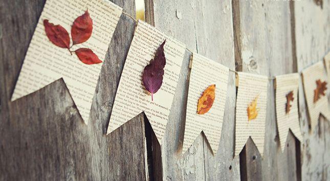 Puur Vandaag | 10 dingen die je kunt doen met herfstbladeren | Puur Vandaag