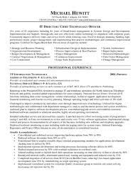 25 unique standard resume format ideas on pinterest resume