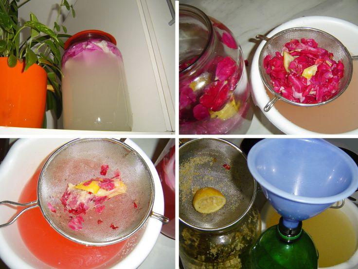 """Domácí limonády, které nemají obdoby.•Domácí limonáda z bezinkových květů, z tužebníku nebo mátová limonáda a další. •Šumivé nápoje voňavé, osvěžující, léčivé. • Jaké si je uděláme, takové je máme.• Kvasinky bez cukru stávkují. • Vyrábíme bylinkové a květinové limonády. • Co na to odborník? • Pan lékárník varuje. • Litr opojného květinového """"sektu"""" za méně než tři kačky. • Když máme limonádu, nemusíme chodit na pivo. •Alkoholické nápoje domácí výroby.•Kdo jednou zkusil, nedá na…"""