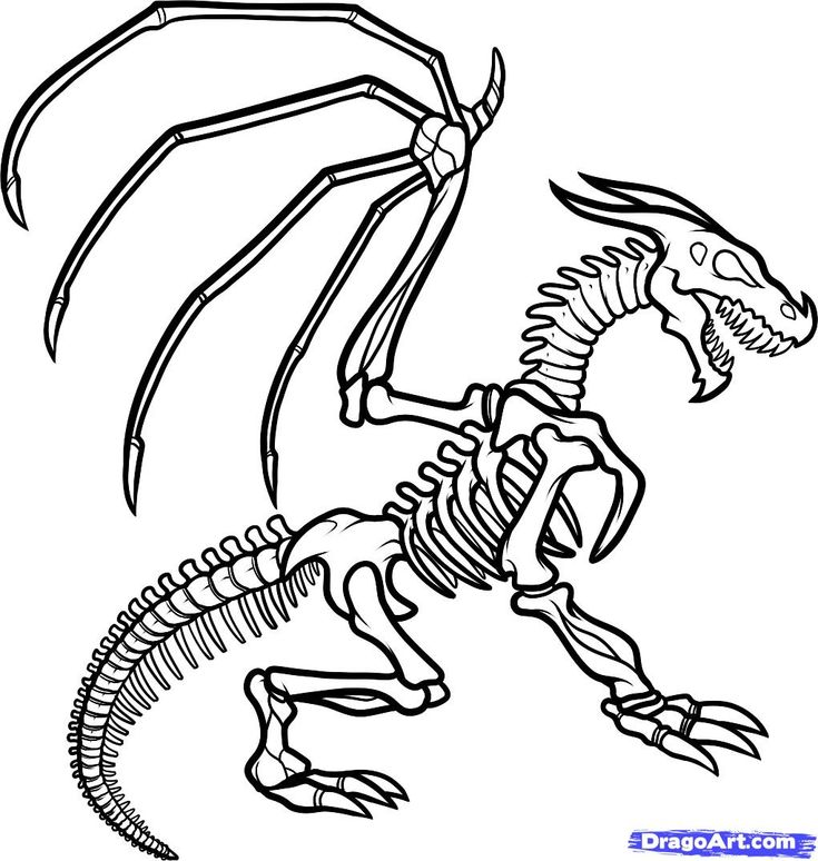 skeleton coloring pages free large images coloring pages pinterest dragon drawings monsters and sketches