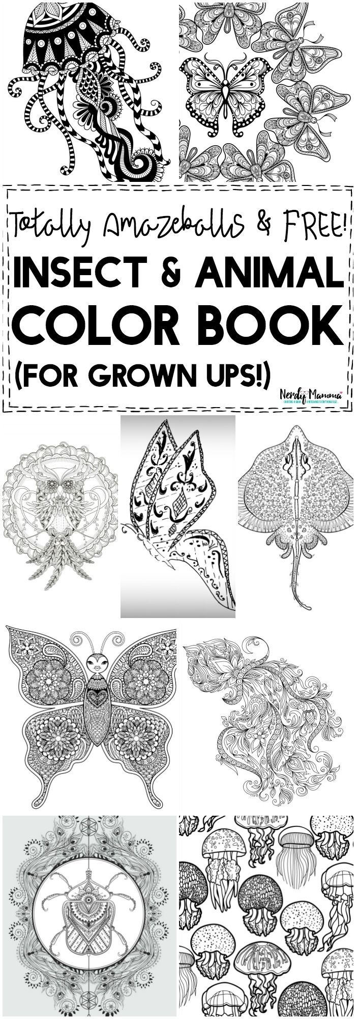 2721 best home look who u0027s coloring images on pinterest