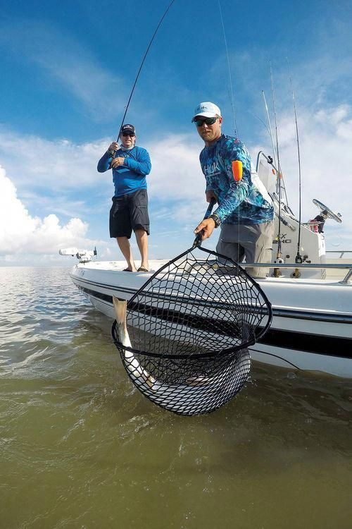 netting redfish from boat using popping cork inshore saltwater