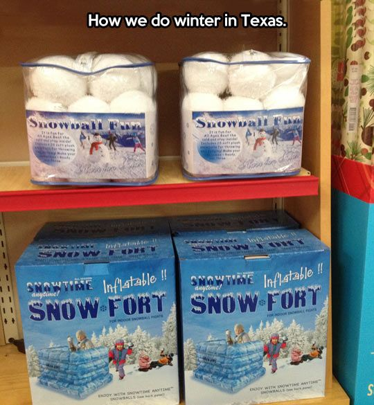 Winter in Texas // funny pictures - funny photos - funny images - funny pics - funny quotes - #lol #humor #funnypictures