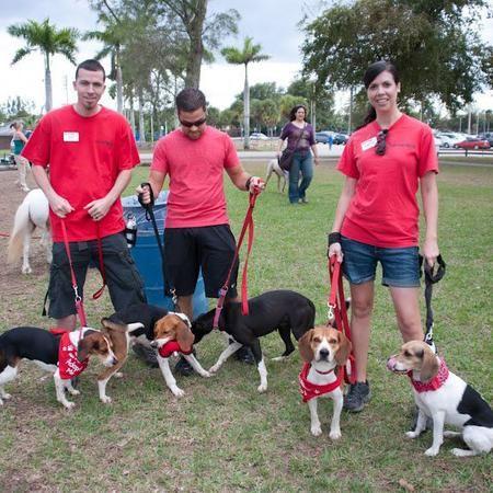 9 best Rover Dog Sitting Miami FL images on Pinterest ...